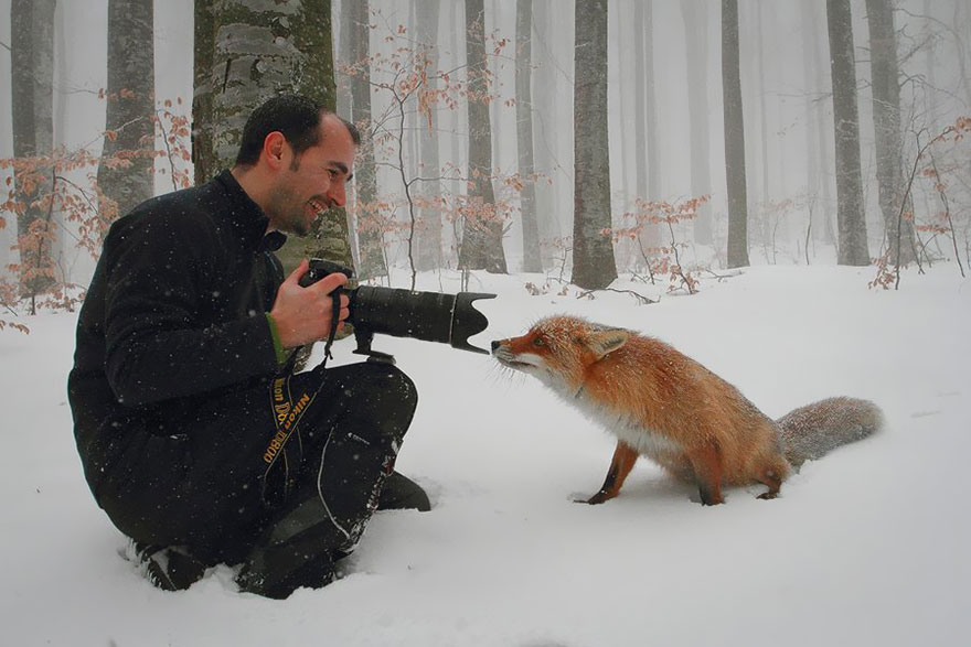 animals-with-camera-helping-photographers-21-1__880.jpg