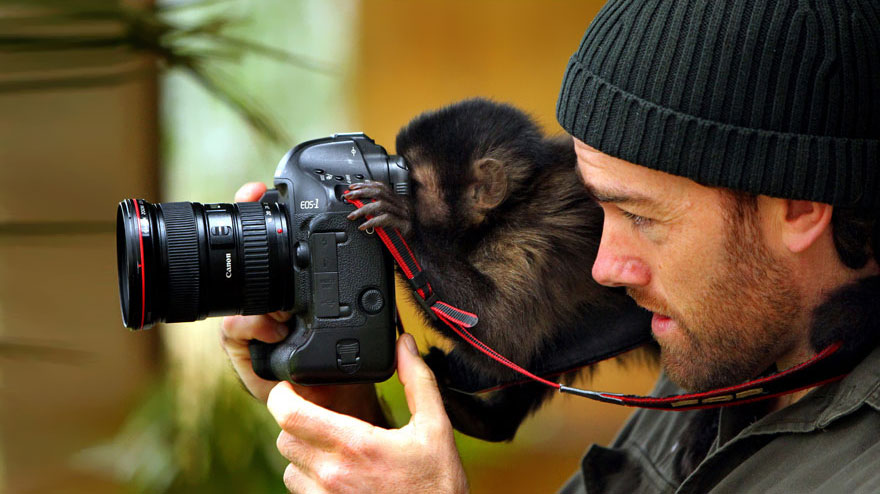 animals-with-camera-helping-photographers-10__880.jpg