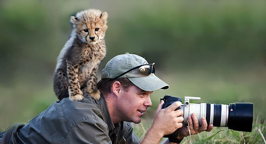 animals-with-camera-helping-photographers-12__880.jpg