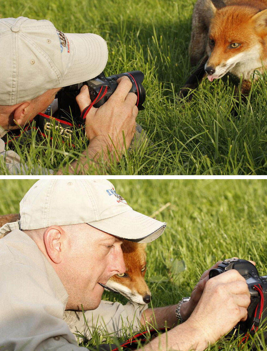 animals-with-camera-helping-photographers-31__880 (1).jpg